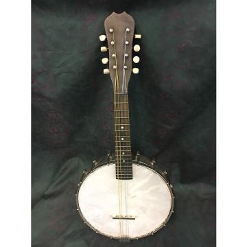 Custom Slingerland  8-string Banjolin vintage