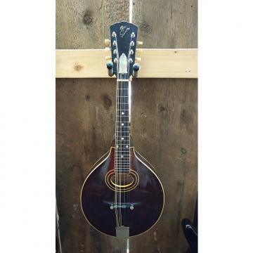 Custom The Gibson A2 Mandolin 1921!!! Brown