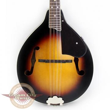 Custom Gretsch G9320 New Yorker Deluxe Acoustic Electric Mandolin Demo Model