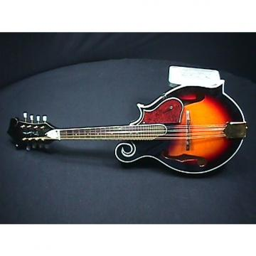 Custom A Fancy F Style Windaroo Mandolin in Great Ready to Play Condition