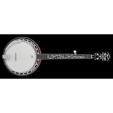 Custom Ibanez  B-200 5-String Banjo