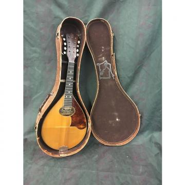 Custom Vintage Bruno imported Mandolin for Restoration/parts