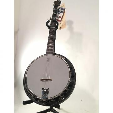 Custom Deering A2 Artisian Banjo with Resonator, dark brown