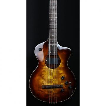 Custom Rick Turner  Model 1 Bass Custom 2016 Sunburst