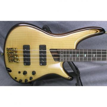 Custom Ibanez SR1400E 4 String Bass