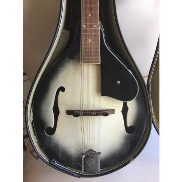 Custom Vega Mandolin 80's Grey Burst/Sunburst PRICE DROP!