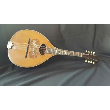 Custom Vega  Amati Mandolin  20s