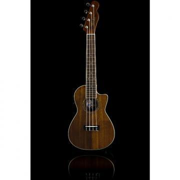 Custom Fender Mino'Aka Koa CE Concert Ukulele, Laminated Koa - Natural