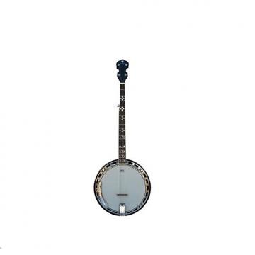 Custom Danville Banjo - 24 Bracket, Mother of Pearl Inlaid, Mahogany Neck, Rosewood Fretboard - #BJ-009