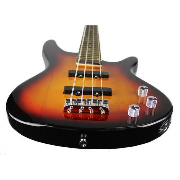 Custom Axiom Defender Bass 2-Color Sunburst