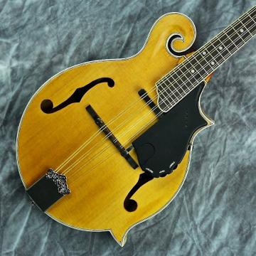 Custom Epiphone MM-50E Acoustic-Electric F-Style Professional Mandolin w/ Flame Maple & Warranty