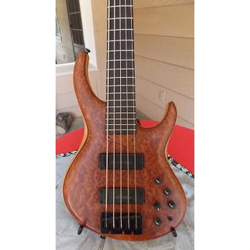 Custom MTD 535-24 Marilyn chambered bass! Amazing Redwood burl top! Beautiful, lightweight! MAKE OFFER!