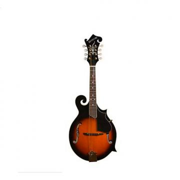 Custom F-Style Mandolin Mahogany Sides Back, Adjustable Rosewood Bridge, come with Case.  model: #MA-007