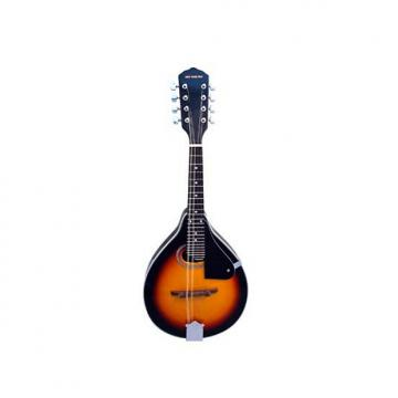 Custom Stadium A-Style Mandolin  model: #M-2