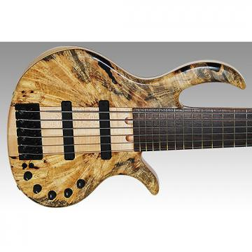 Custom Elrick Platinum Neck Thru 6 Buckeye Burl