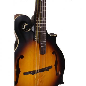 Custom Morgan Monroe Rocky top mandolin- RT-FMTB NEW