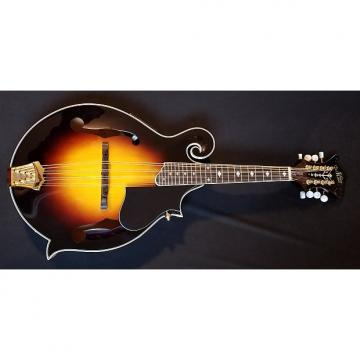 Custom Morgan Monroe Mandolin, Rocky Top-Electric