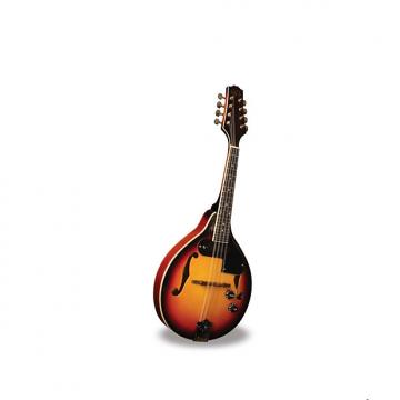 Custom Morgan Monroe Electric Mandolin Its like nothing else  MODEL: RT-M1E Electric