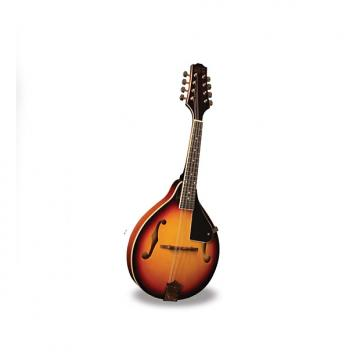 Custom Morgan Monroe - Mandolin Its like nothing else  MODEL: RT-M1