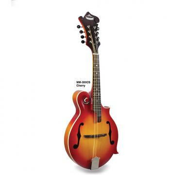Custom Morgan Monroe Mandolin Its like nothing else (Cherry) MODEL: MM-300CS