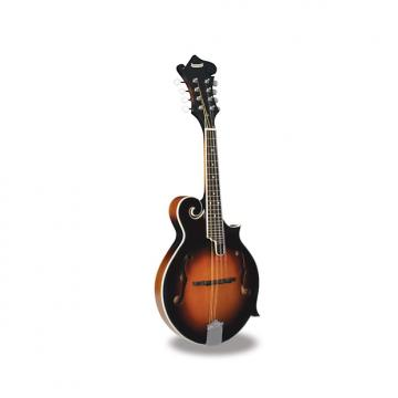 Custom Morgan Monroe - Mandolin Its like nothing else  MM-100FM