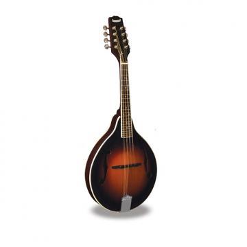 Custom Morgan Monroe - Mandolin Its like nothing else  MM-100AM