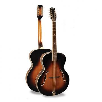 Custom Morgan Monroe Mandolin Its like nothing else - MODEL: MM-MC100