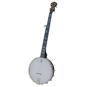 Custom Deering Artisan Goodtime Open-Back Banjo, 5-String
