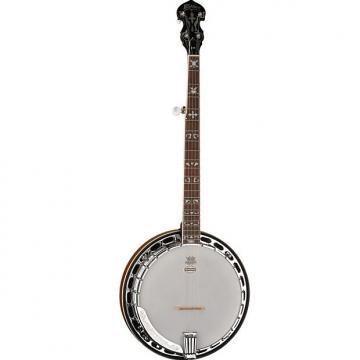 Custom Washburn B16K Pro 5 String Banjo w/ Hard Shell Case