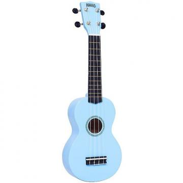 Custom Ukulele Light Blue