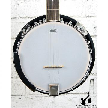 Custom Ibanez B50 5-String Banjo Natural