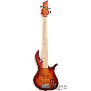 Custom F Bass BN5 Ash Body, Maple Fingerboard Electric Bass, Auburn Burst with Deluxe Gigbag - FSR580914