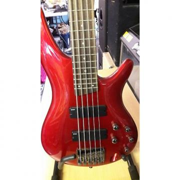 Custom Ibanez SR305 5 String Bass