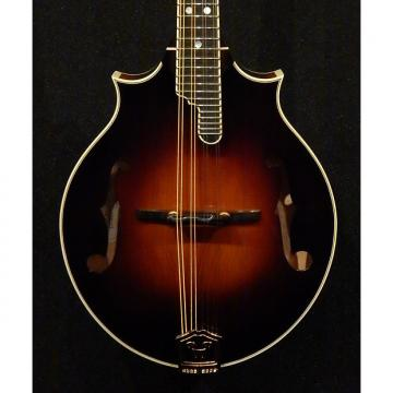 Custom Weber Fern 2-Point Mandolin NEW