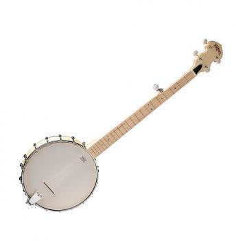 Custom Washburn B102 Five String Banjo