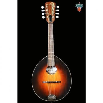 Custom Red Line Traveler Army-Navy Mandolin Walnut Sunburst