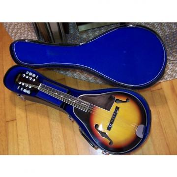 Custom Global Vintage Mandolin M100 & Original Case