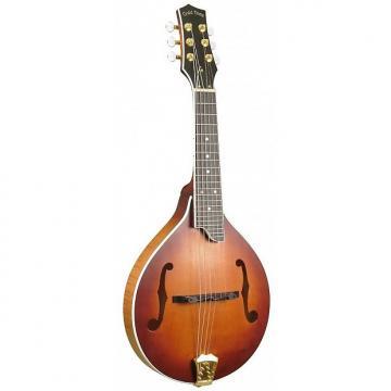 Custom Gold Tone GM-6+ Mandoline 6 cordes  (+ étui)