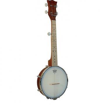 Custom Plucky Banjo Gold Tone (+ housse)