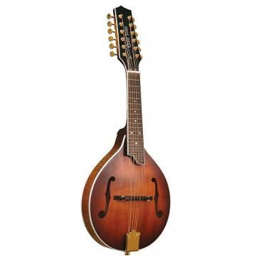 Custom Gold Tone GM-12+ Mandoline 12 cordes (+ étui)
