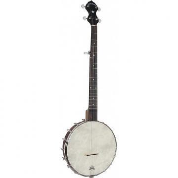Custom Gold Tone CC-OT - Pack Banjo Openback