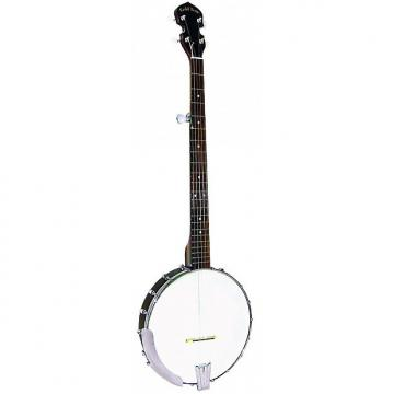 Custom Gold Tone CC-50 - Banjo Openback (+ housse)