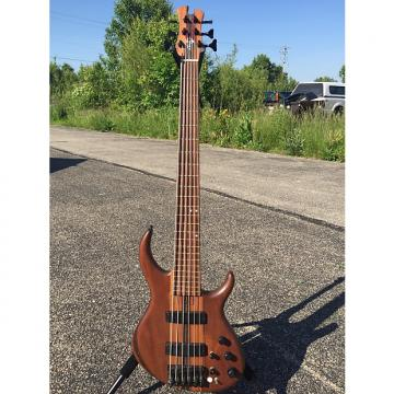 Custom Pre-Gibson Tobias Classic 6-string, #17XX Walnut, needs some love
