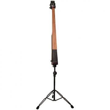 Custom Dean Upright Pace Bass Blk w/case