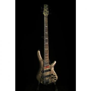 Custom Ibanez Bass Workshop Fan Fret 5 String Bass Guitar with Bartolini Pickups 2015 Translucent Grey