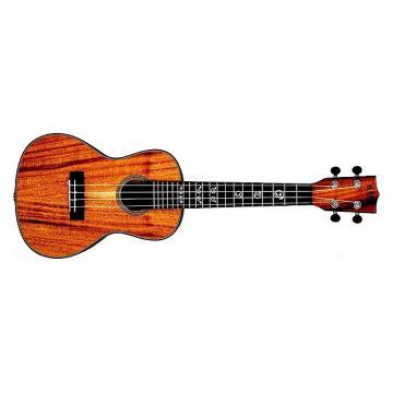 Custom Kala Acacia massif KA-ASAC-C - Ukulele Concert (+ étui)