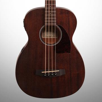 Custom Ibanez PCBE12MH Acoustic Bass, Open Pore Natural