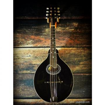 Custom Eastman Mandolin MD504 BLACK w/ Case