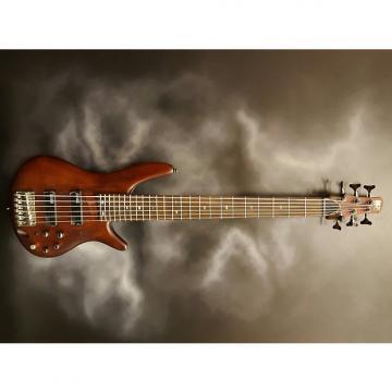Custom Ibanez SR506 6-String