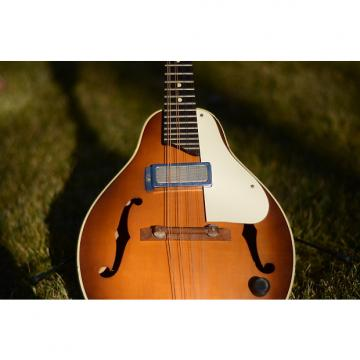 Custom Kay Model K495 :: Electric Mandolin :: 1966 :: Sunburst :: US Made
